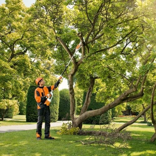 Stihl professional cordless pole pruner