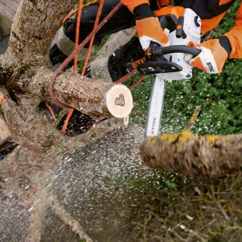 Stihl mS201TcCM powerful top handled chainsaw